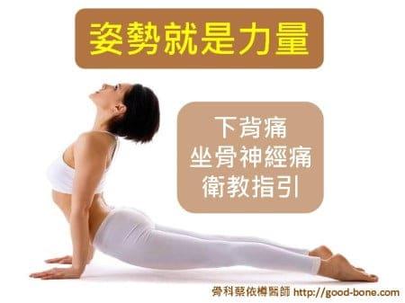 L-spine (1)